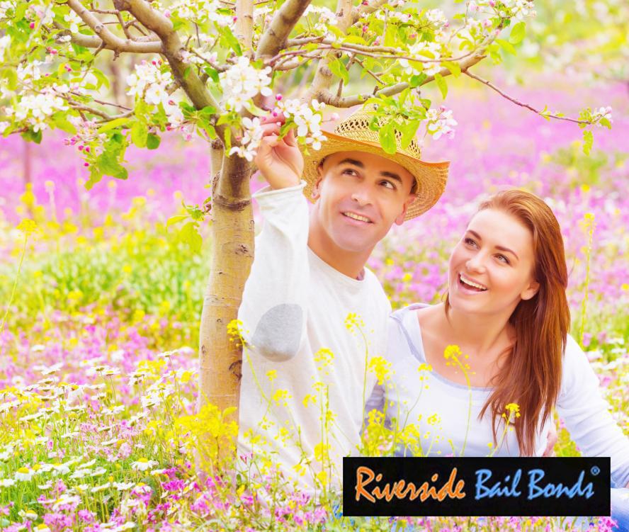 banning-bail-bonds-119